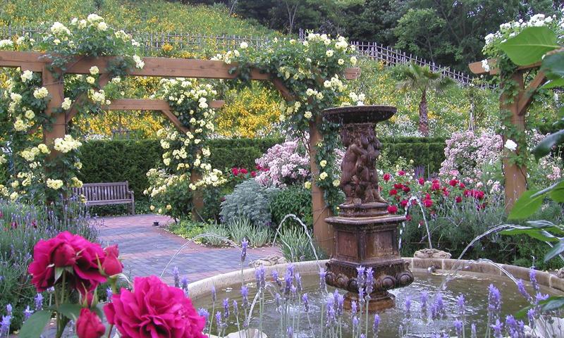 055 みやま公園英国庭園散策と渋川たまの温泉