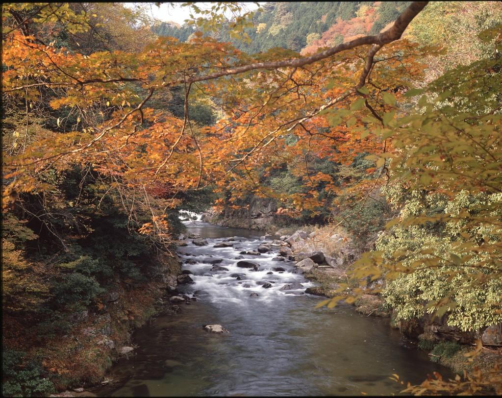 赤和瀬渓谷