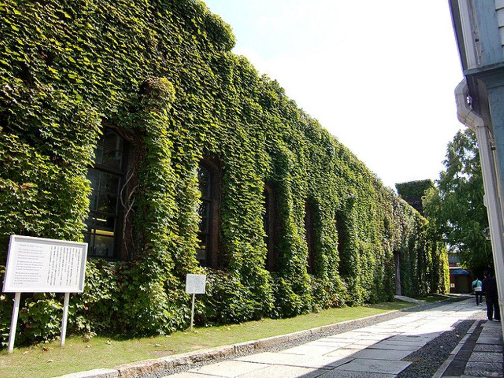 アイビー学館