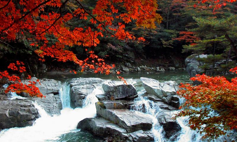 021 奥津渓と美人湯・奥津温泉を巡る