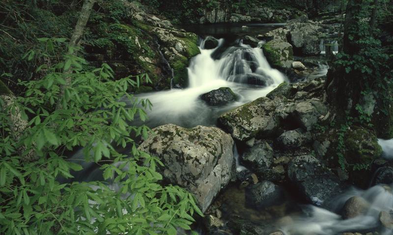 046マイナスイオンたっぷり渓流とウランガラス