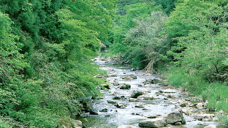 きづき渓谷